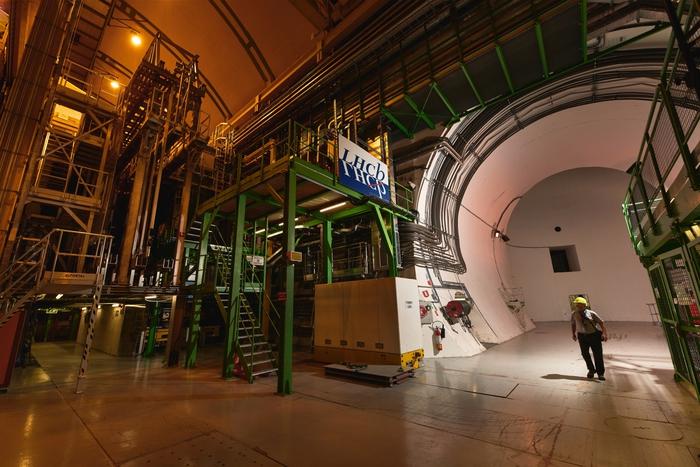 Cern, due particelle mai viste fanno luce sulla 'colla' della materia
