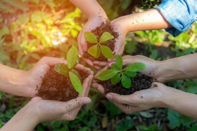 Innovazione e sostenibilità: l'economia circolare