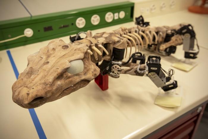 Quattro passi nella preistoria, con un robot – VIDEO
