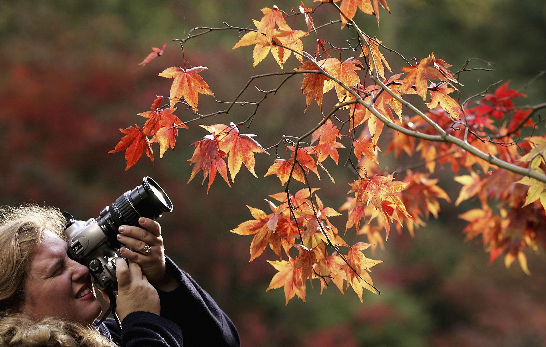 Raccontare l'autunno