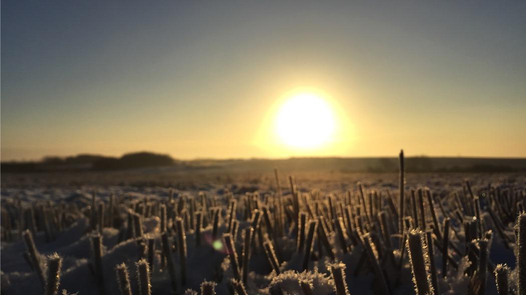 Oggi è il solstizio d'inverno, il giorno più corto dell'anno