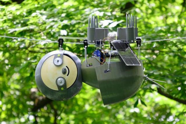 Il bradipo robot che aiuterà l'ambiente